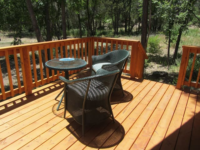 The steps off the deck lead to forest hammocks for reading and our natural springs pond.