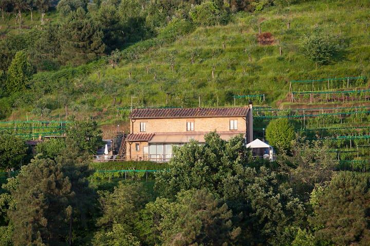 Karma, un'oasi di pace - Montignoso - Haus