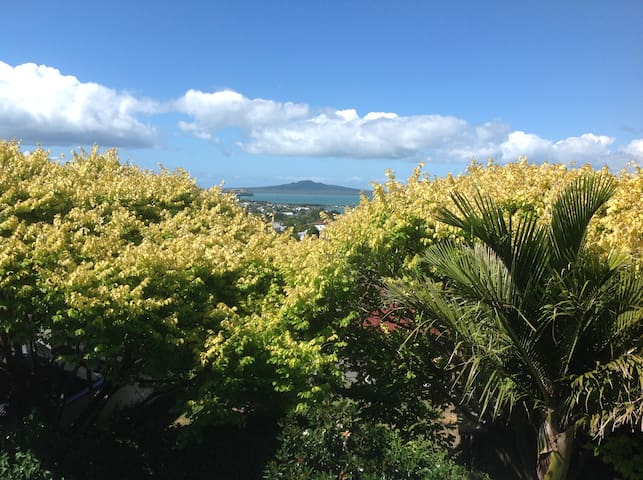 Twin bedroom plus ensuite - Auckland - Penzion (B&B)