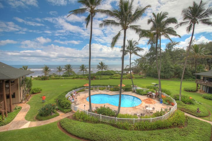 Oceanfront Kaha Lani w/Pool and Full Kitchen!
