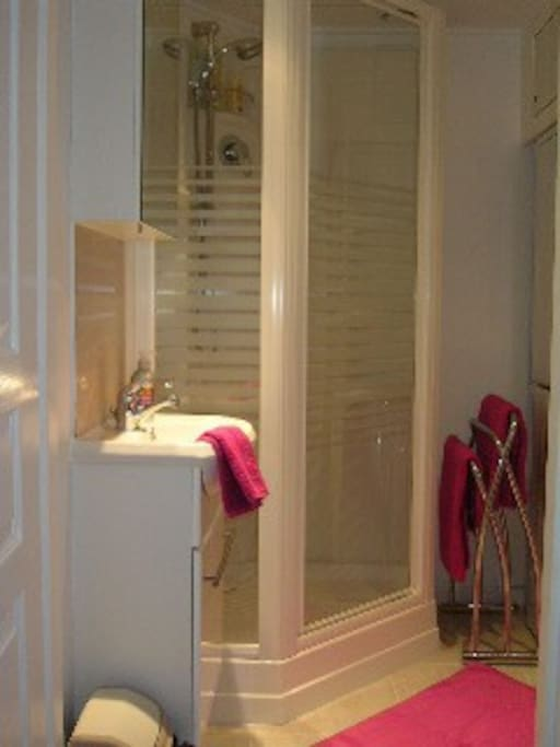 proper shower with handbasin. Toiled in a separate room in the same apartment