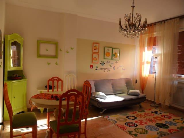 La Zucca Violina    Ferrara - Ferrara - Apartment