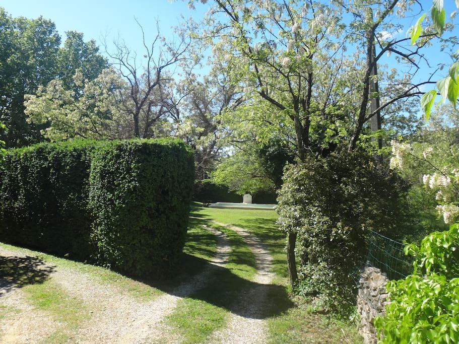 Un jardin sans vis-à-vis directs.