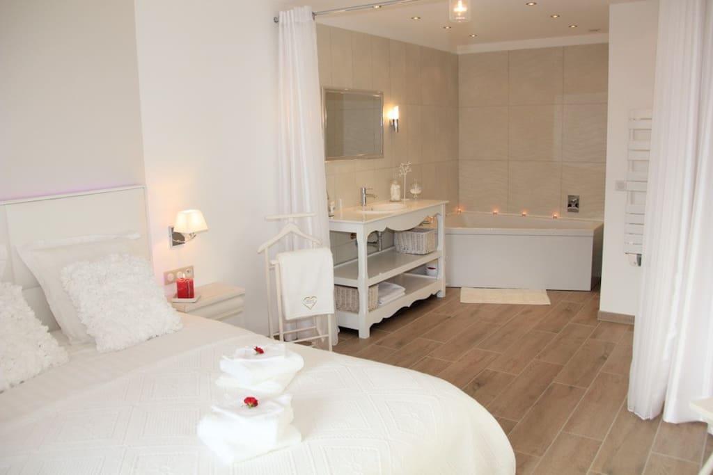 chambre 1  avec grande salle de bain ouverte