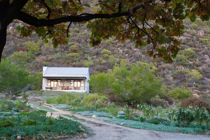 Cederkloof Botanical Retreat: Double units