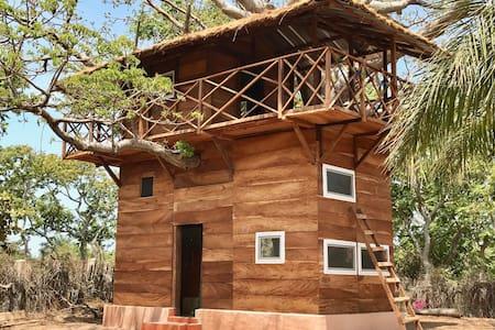 Sito Kono, cabane perchée dans la paix du baobab!