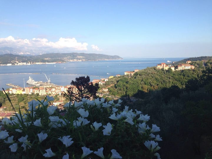 Exclusive Panoramic Villa On The Cinque Terre Via
