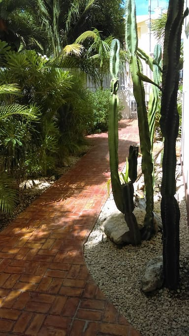 Front walk to parking area