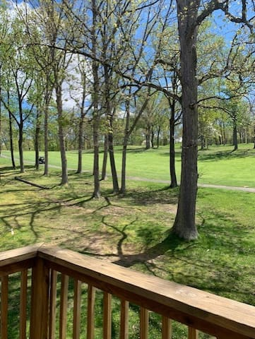 203 Whitetail Way on Lakeview Golf Course,