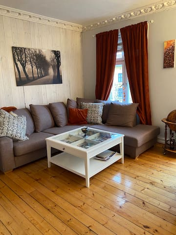 Charming apartment close to city centre of Oslo