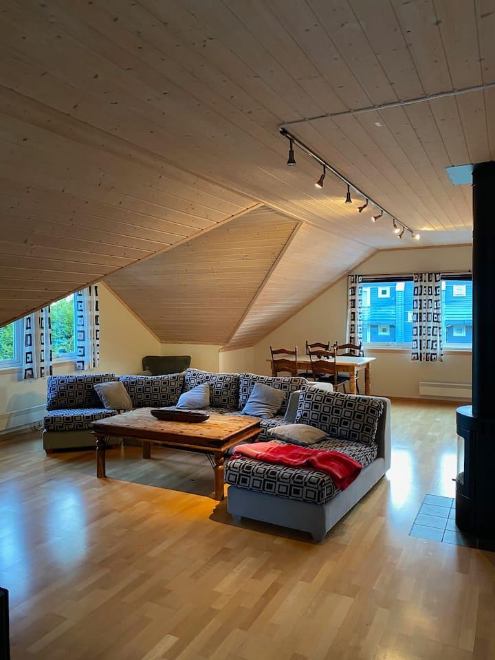 Romslig leilighet på Vesterøya i Sandefjord