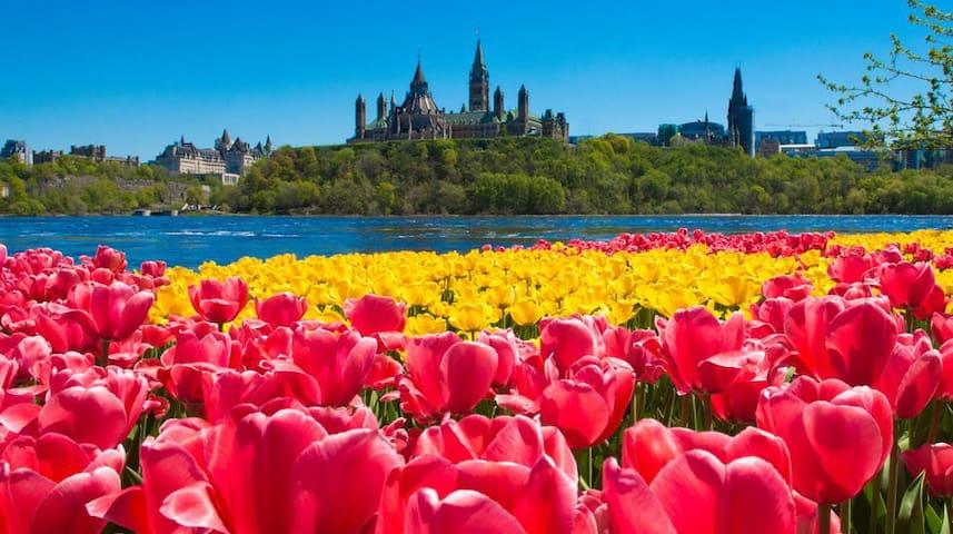 Tourist guide for Ottawa/Kanata