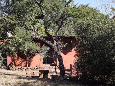 UP THE CREEK  Klaas's Cottage