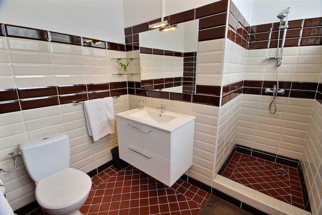 Salle de bain privée chambre 1