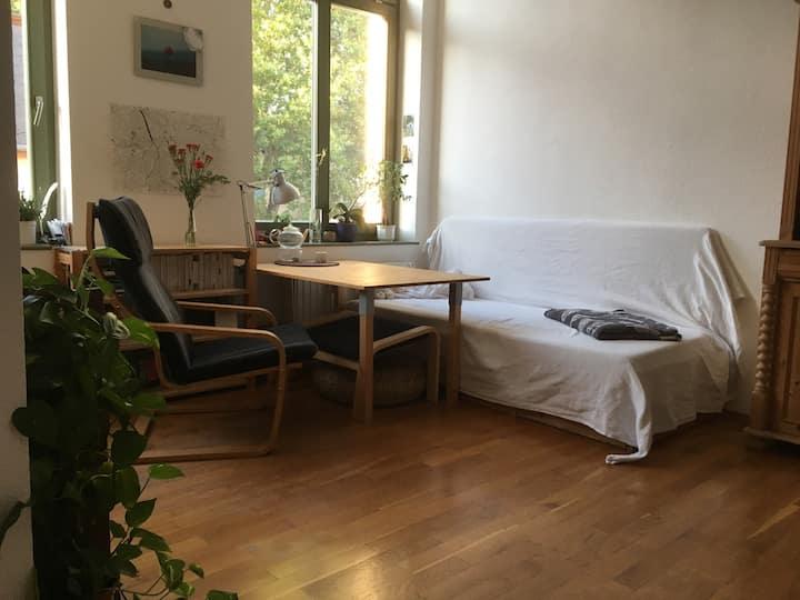 Gemütlich, persönliche Wohnung im Zentrum-West