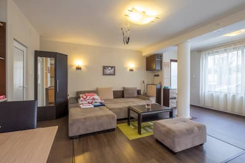 Lovely studio walking distance from ideal center
