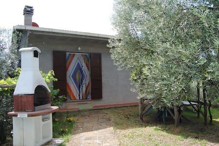 Beautiful House in Tuscan Countryside - Guardistallo  - Talo