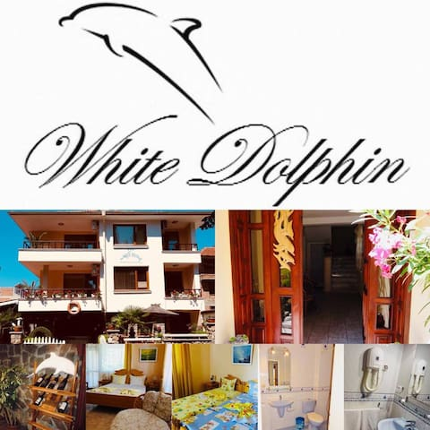 Guest House White Dolphin- Family suite 1