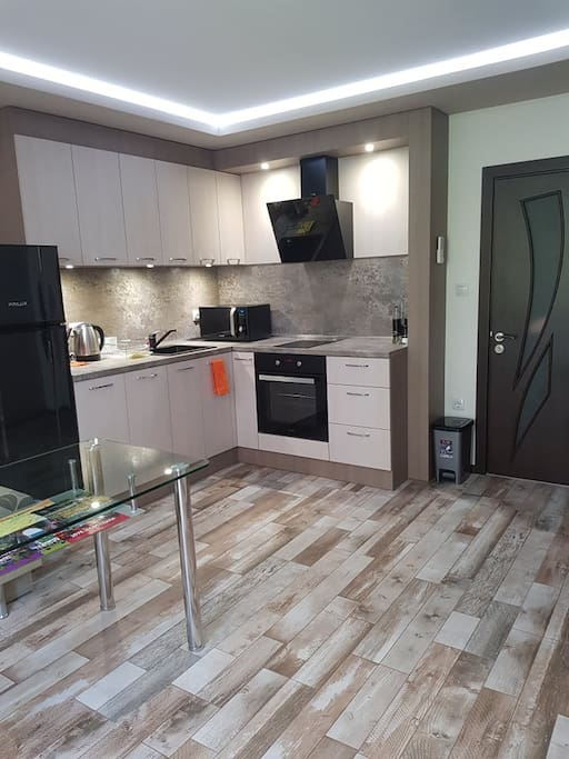 Fully furnished kitchen with cooktop and oven.