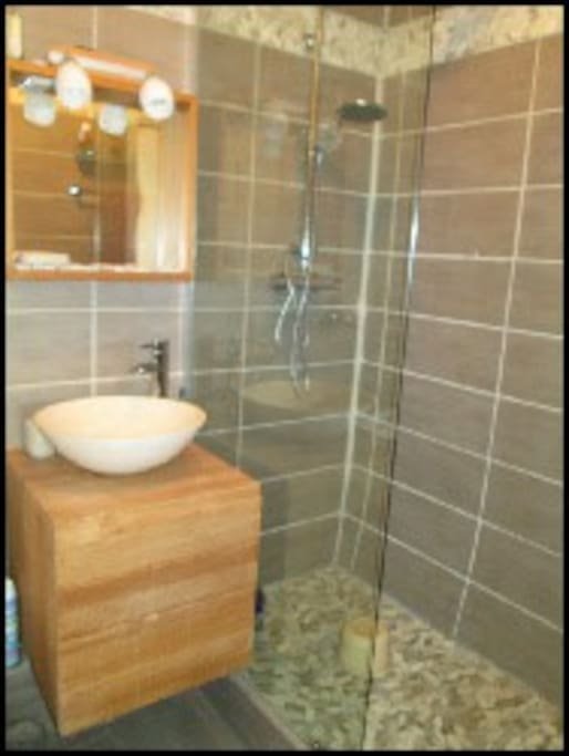 Shower room with toilet and hand basin.
