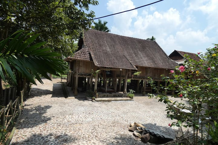Muong Bi Homestay (Uncle Lon)