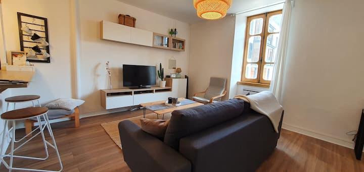 Magnifique appartement centre ville Foix