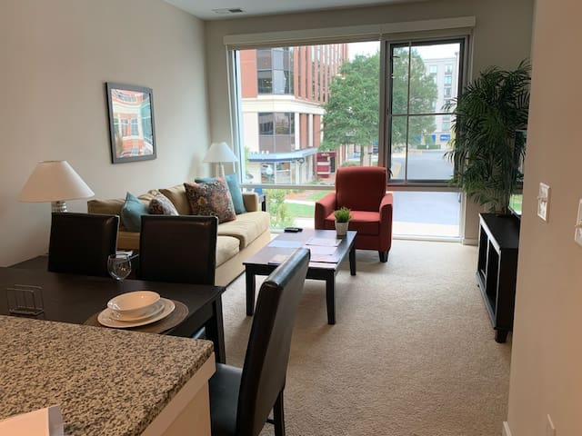 1 bedroom with a great view in Town Center! (101)