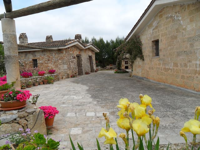 Deliziosa casa in campagna nel cuore del Salento - Casarano - บ้าน