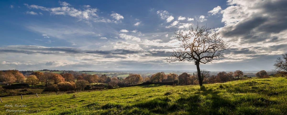 Proche du Puy du Fou* Gite de la Vigne *6pers