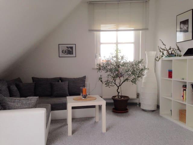 Large room-separate bathroom, Toilet on own floor