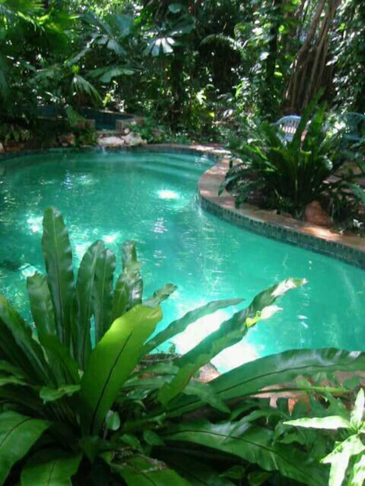 JUNGLE COMMUNITY COCONUT GROVE. POOL. Share room
