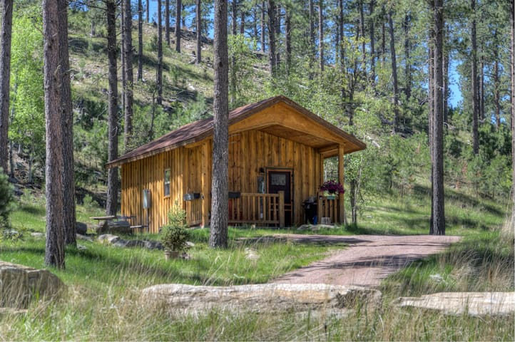 Black Hills Custom Cabin, 10 acres near Mt Rushmore 5⭐️Yak Ridge #2