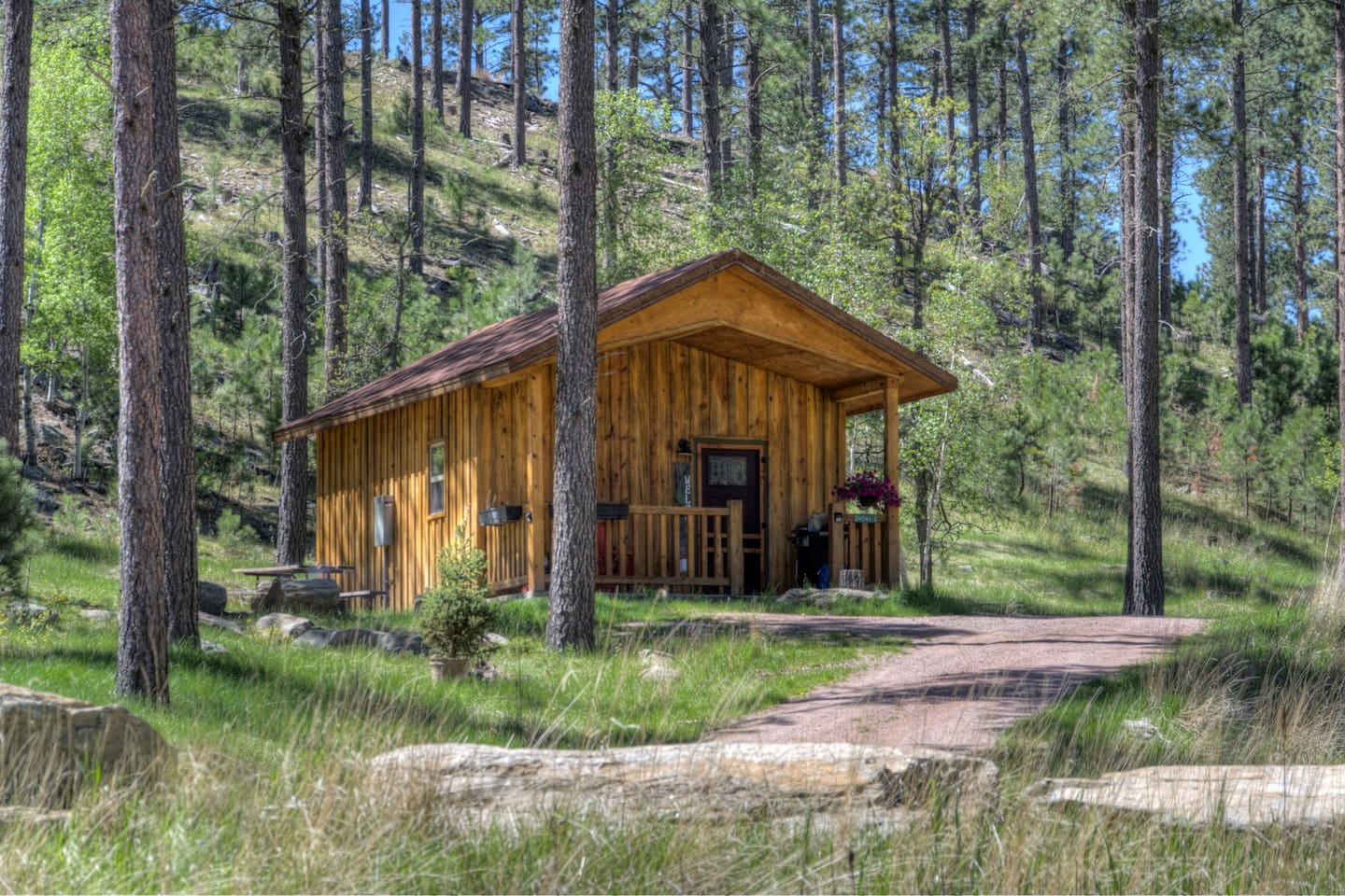 the cabin is nestled on a hillside covered with pines, aspens, oaks, and birch
