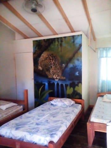Cabins Palmeras Lodge