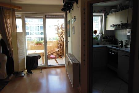 Helle, gemütliche 1-Zi. Wohnung in Vauban-Freiburg - Freiburg - Appartement