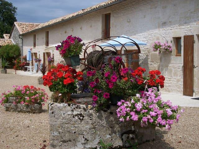 Pretty 3 gite complex in Poitou-Charentes - Sauzé-Vaussais