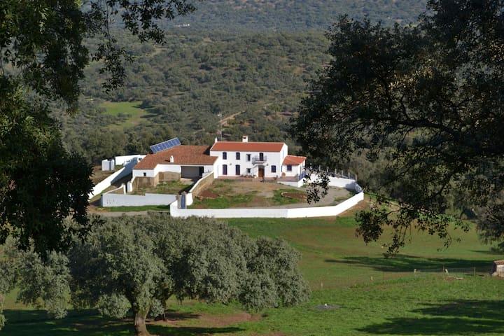 CORTIJO MIRACIELO - Arroyomolinos de León - Hus