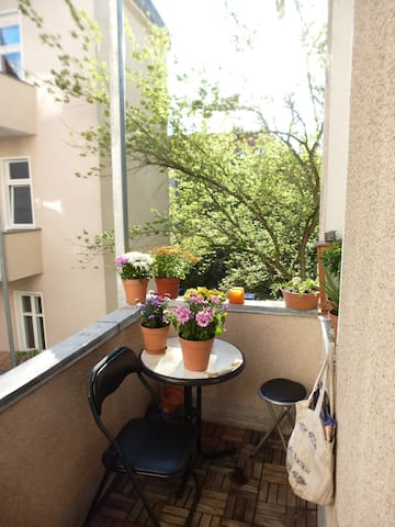 Spacious 2 rooms with balcony green & quiet