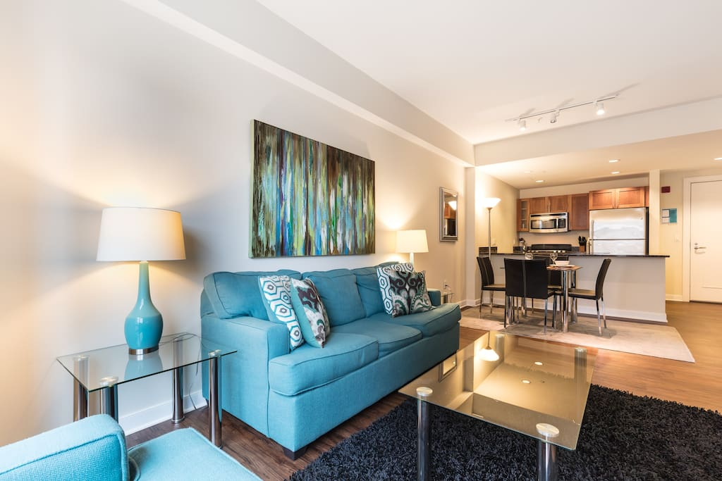 Luxurious 1 Bedroom West End Apartment Apartments For Rent In Boston Massachusetts United