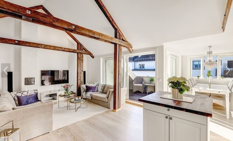 Beautiful penthouse apartment with a big terrace - Oslo - Apartment