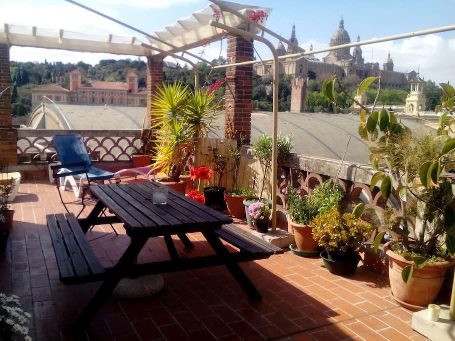 Relaxing terrace
