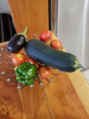 Veggies picked fresh from the planters on the front deck!  Help yourself!