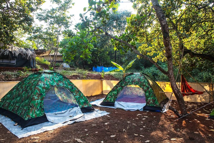 small cosy tent@Jungle Resort Agonda