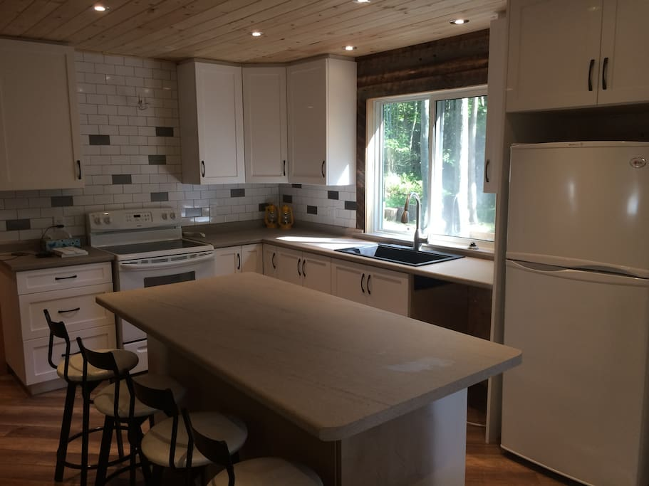 Newly Renovated Kitchen with a stove, microwave and fridge.