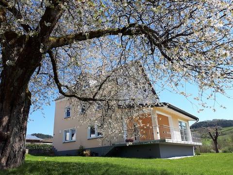 Haus Kerselaar 16 personer, feriehus