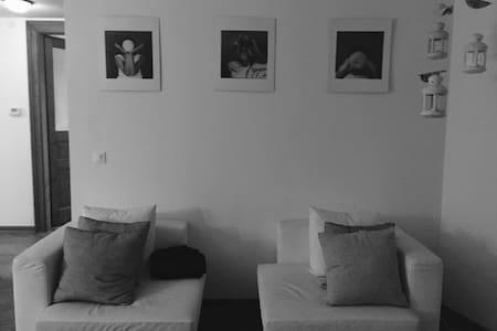 AMAZING FLAT IN CAVANA, TRIESTE - Trieste - Apartment