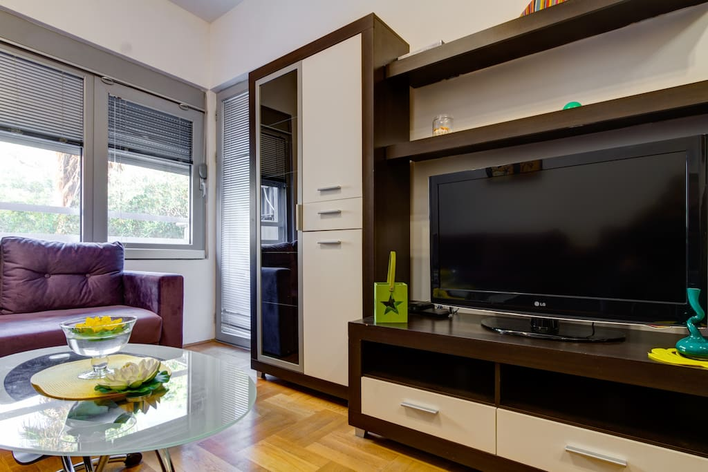 Living Room and Big Flat Screen TV