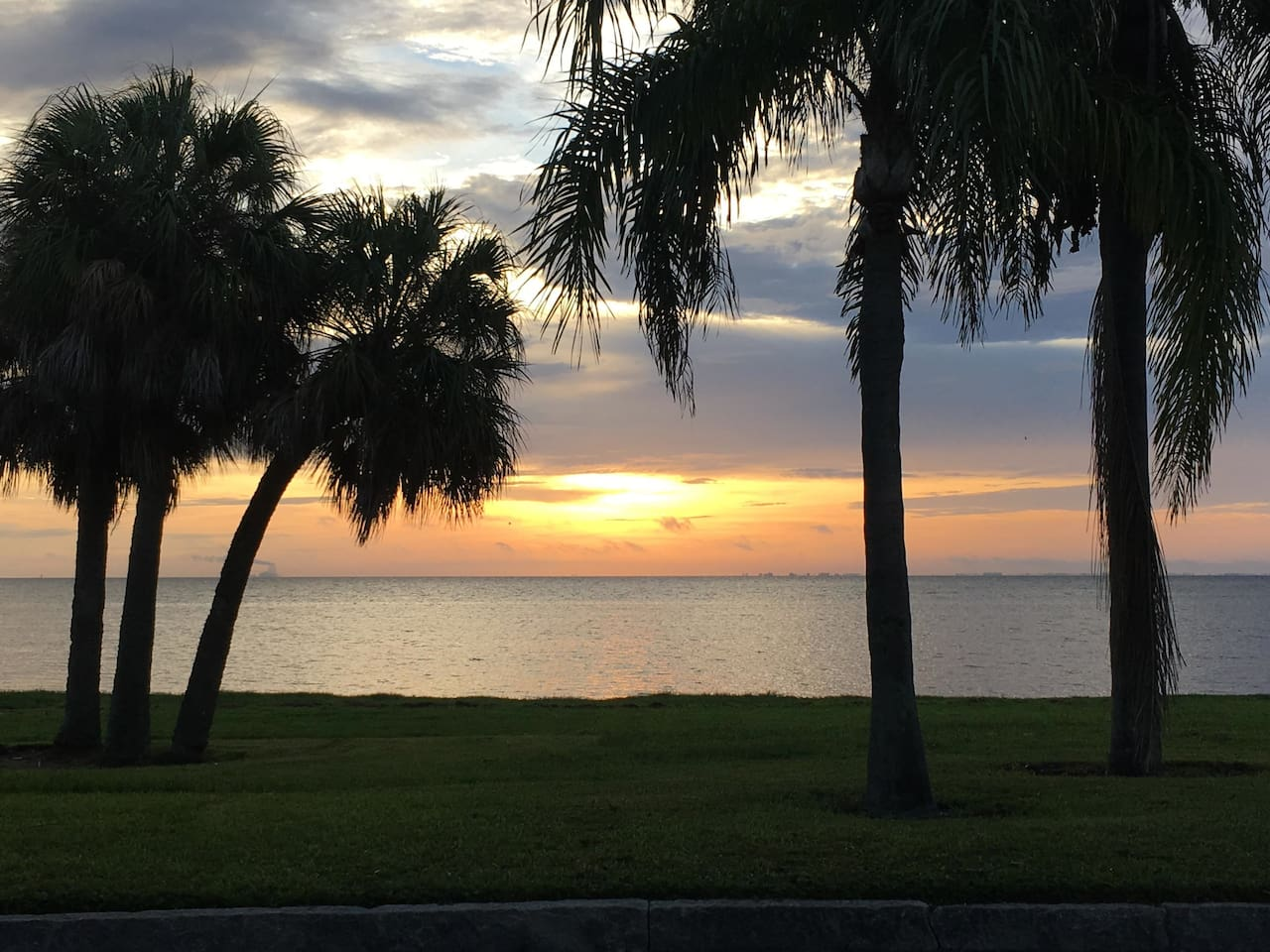 Sunrise View of Tampa Bay