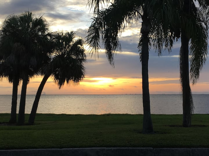 Waterfront cottage apartment overlooks Tampa Bay!