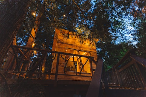 The Cabin at Ferngully